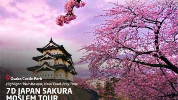 Liburan Tambah Seru dengan Paket Wisata Muslim Jepang 2020